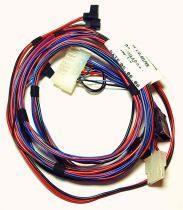 Glow Worm Wiring Harness 0020020778
